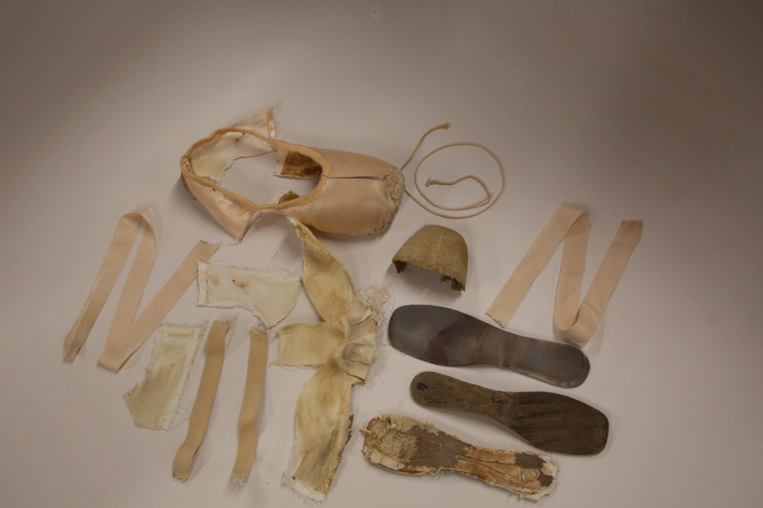 The Pointe Shoe: Dissected